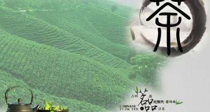 品茶廣告設計